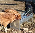 Mangeoire à volailles 50 cm en galva