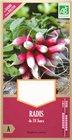 Graines de radis de dix huit jours