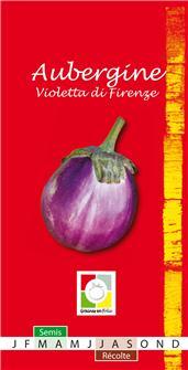Graines d´aubergine Violetta di Firenze